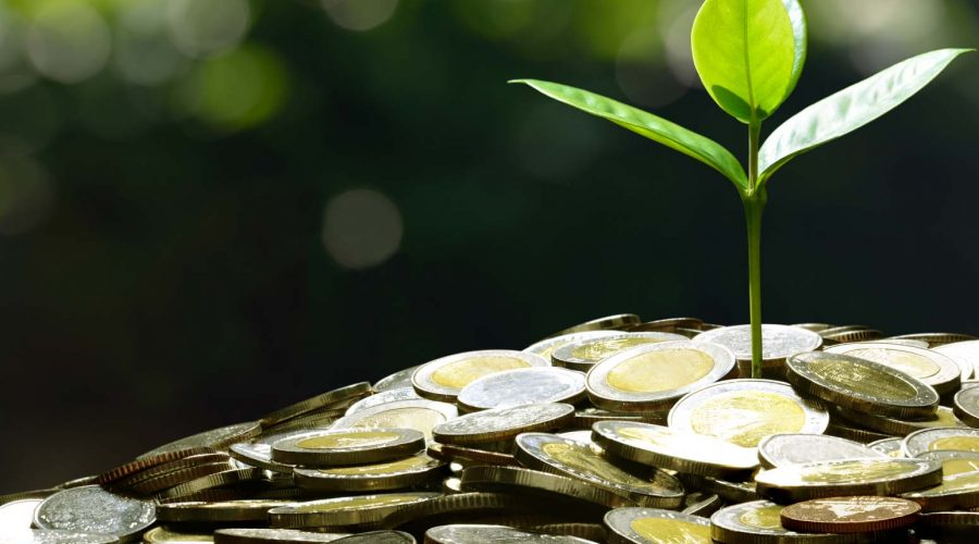 Image of pile of coins with plant on top